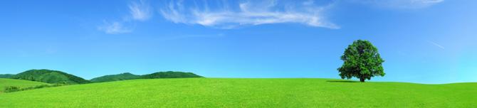 gestione_ambientale